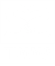 S. & S. TIMMS ANTIQUES LIMITED