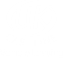 CARLINE LIMITED