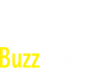 BUZZWORDS LIMITED