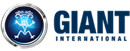 GIANT INTERNATIONAL LIMITED