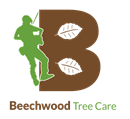 BEECHWOOD TREE CARE LIMITED