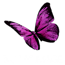 BODY IMAGE - BEAUTY & LASER CLINIC LTD.