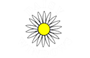 DAISY WINDOWS LIMITED