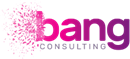 BANG CONSULTING LIMITED