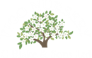 C. BLAKE & SONS LIMITED