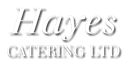 HAYES CATERING LIMITED