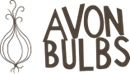 AVON BULBS LIMITED