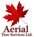 AERIAL TREE SERVICES LTD