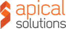 APICAL IT SOLUTIONS LIMITED