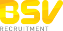 BSV RECRUITMENT LIMITED