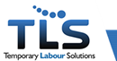 TEMPORARY LABOUR SOLUTIONS LIMITED