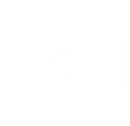 DIGITAL GURUS RECRUITMENT LIMITED
