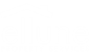 ELLUNE PROPERTY SERVICES LIMITED