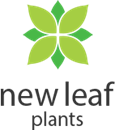NEW LEAF PLANTS LTD