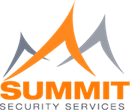 SUMMIT SECURITY SERVICES LTD