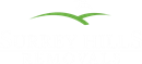 SURREY HILLS REMOVALS LIMITED