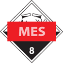 MES CONSULTANCY & TRAINING SERVICES LIMITED