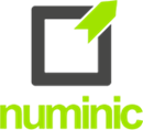 NUMINIC LIMITED
