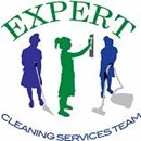 EXPERT CLEANING SERVICES TEAM LTD