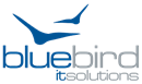 BLUEBIRD IT SOLUTIONS LIMITED