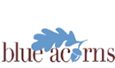 BLUE ACORNS ASSOCIATES LIMITED