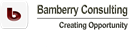 BAMBERRY LIMITED