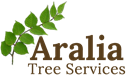 ARALIA TREE SERVICES LTD