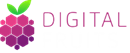 DIGITAL FRUITS LTD