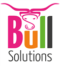 BULL SOLUTIONS LIMITED
